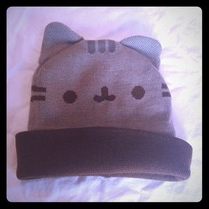 Pusheen knit hat with ears :)